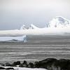 1253 - Detaille Island - 2011-02-21 - P1060935