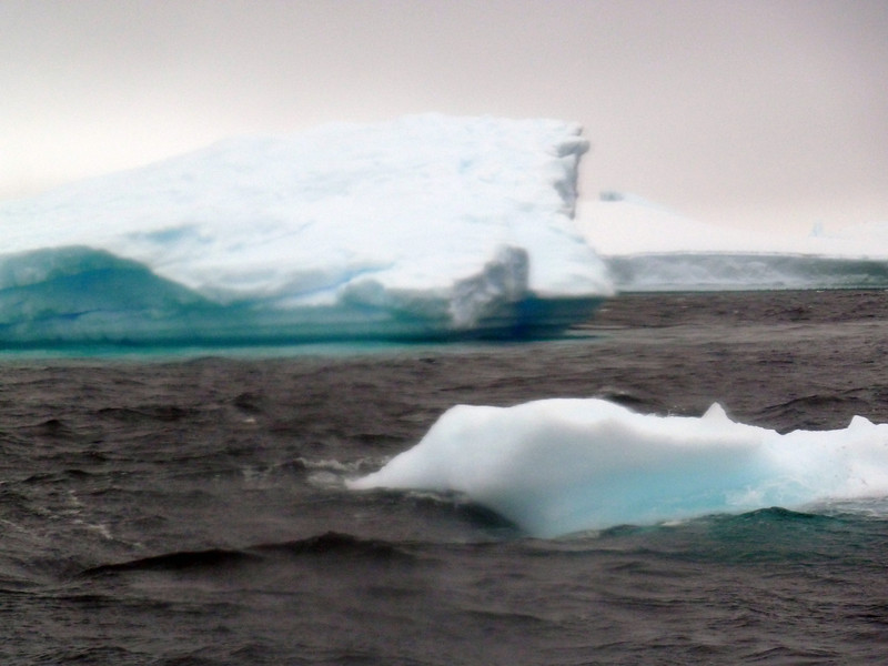 1492 - Penola Strait-Booth Island - 2011-02-22 - P1010833