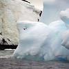 1367 - Detaille Island - 2011-02-21 - P1070121