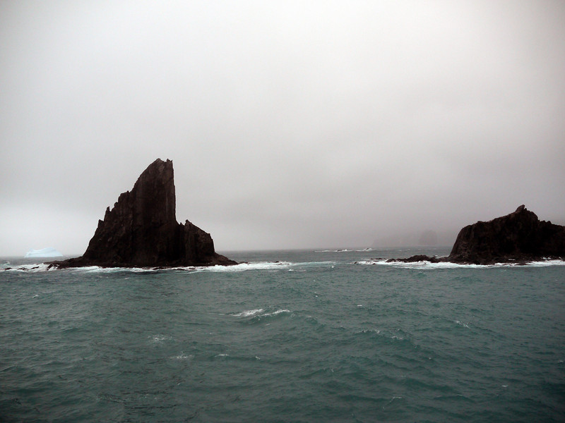 1742 - Elephant Island - 2011-02-24 - P1070536