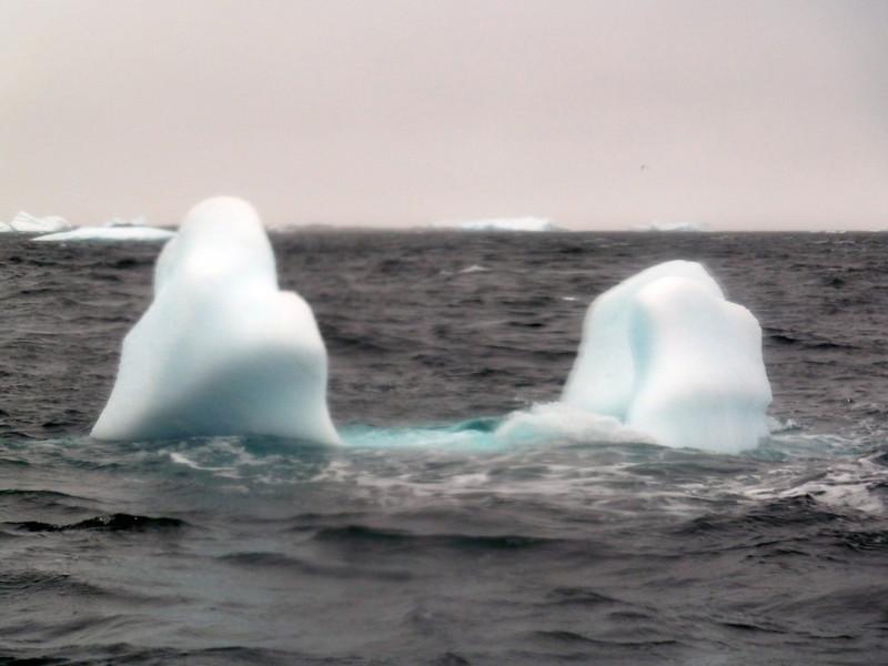 1491 - Penola Strait-Booth Island - 2011-02-22 - P1010832