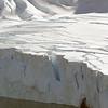 0544 - Neko Harbour - 2011-02-20 - P1060040