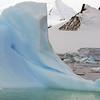 1099 - Crystal Sound - 2011-02-21 - P1060767