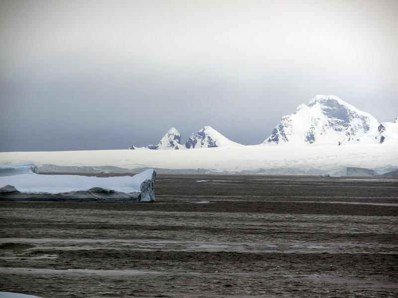 1251 - Detaille Island - 2011-02-21 - P1060932