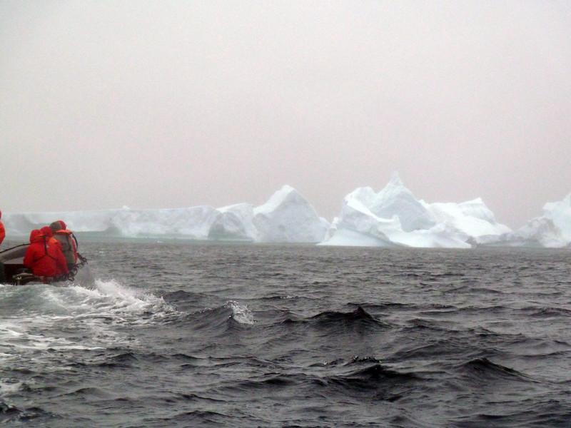 1428 - Penola Strait-Booth Island - 2011-02-22 - P1010753