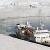 0533 - Neko Harbour - 2011-02-20 - P1060037