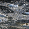 1504 - Gerlache Strait - 2011-02-22 - P1010862