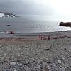 0188 - Half Moon Island - 2011-02-19 - P1010611