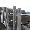 1595 - Deception Island - 2011-02-23 - P1070287