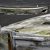 1610 - Deception Island - 2011-02-23 - P1070306