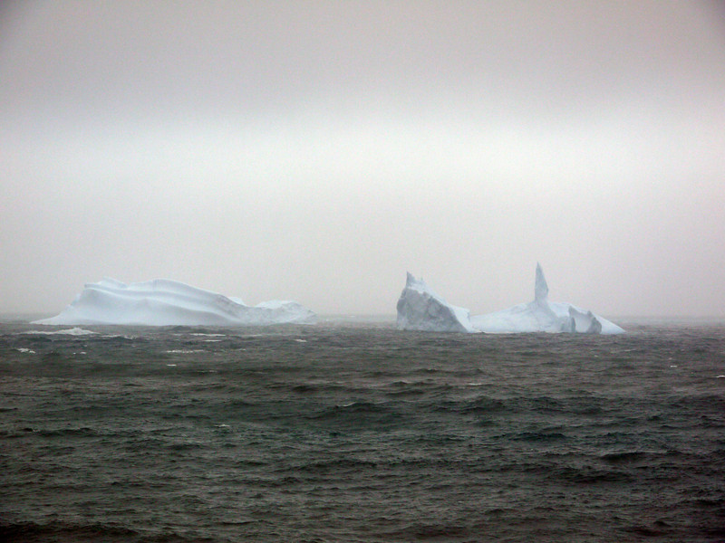 1759 - Elephant Island - 2011-02-24 - P1070545