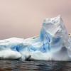 1343 - Detaille Island - 2011-02-21 - P1070083