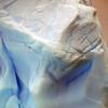 1344 - Detaille Island - 2011-02-21 - P1070084