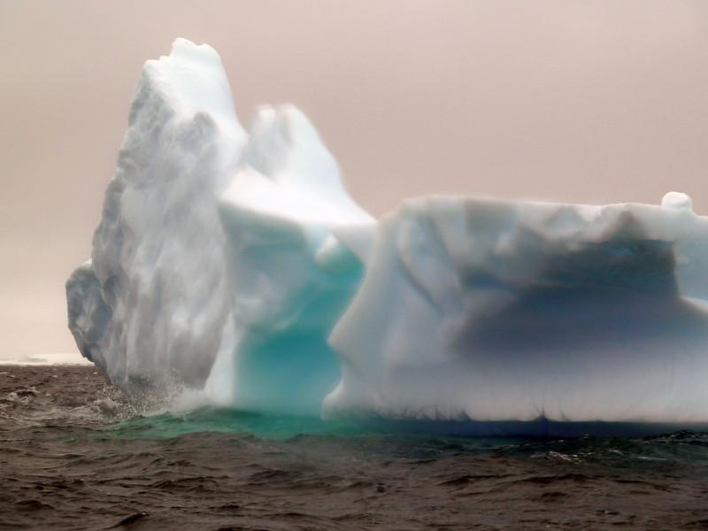 1472 - Penola Strait-Booth Island - 2011-02-22 - P1010809