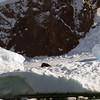 0438 - Neko Harbour - 2011-02-20 - P1050958