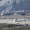 0406 - Neko Harbour - 2011-02-20 - P1050895