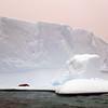 1439 - Penola Strait-Booth Island - 2011-02-22 - P1010765