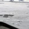 1287 - Detaille Island - 2011-02-21 - P1060971