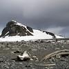 0229 - Half Moon Island - 2011-02-19 - P1050704