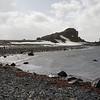 0233 - Half Moon Island - 2011-02-19 - P1050708