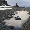 0185 - Half Moon Island - 2011-02-19 - P1010608