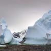 1373 - Detaille Island - 2011-02-21 - P1070137