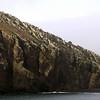 1528 - Deception Island - 2011-02-23 - P1070198
