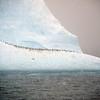 0360 - At Sea - 2011-02-19 - P1050860