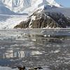 0370 - Neko Harbour - 2011-02-20 - P1050884