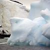 1366 - Detaille Island - 2011-02-21 - P1070120