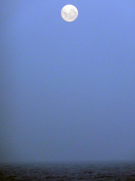 0126 - At Sea (Drake Passage) - 2011-02-18 - P1010565