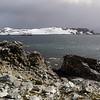 0265 - Half Moon Island - 2011-02-19 - P1050751