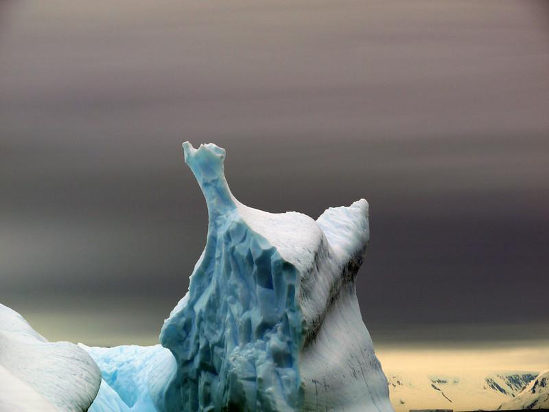 1348 - Detaille Island - 2011-02-21 - P1070088
