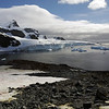 0683 - Cuverville Island - 2011-02-20 - P1060204