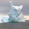 1349 - Detaille Island - 2011-02-21 - P1070089