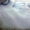 1386 - Detaille Island - 2011-02-21 - P1070164