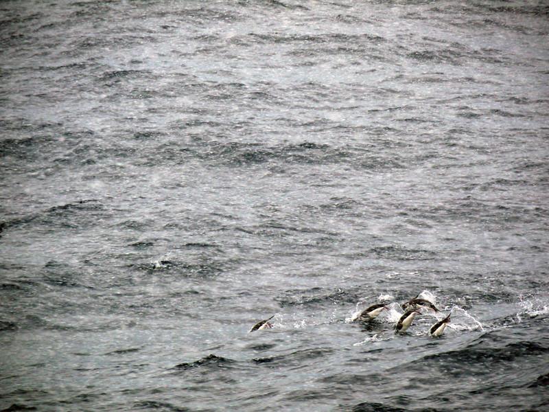 0321 - At Sea - 2011-02-19 - P1050821