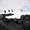 1314 - Detaille Island - 2011-02-21 - P1070021