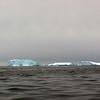 1391 - Detaille Island - 2011-02-21 - P1070171