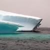 1412 - Penola Strait-Booth Island - 2011-02-22 - P1010733