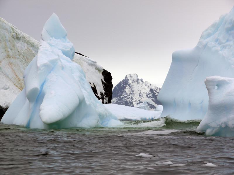 1371 - Detaille Island - 2011-02-21 - P1070127