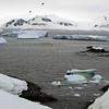 1246 - Detaille Island - 2011-02-21 - P1060926