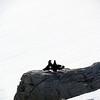 0558 - Neko Harbour - 2011-02-20 - P1060050