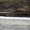 1540 - Deception Island - 2011-02-23 - P1070223