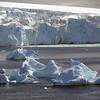 0618 - Cuverville Island - 2011-02-20 - P1060152