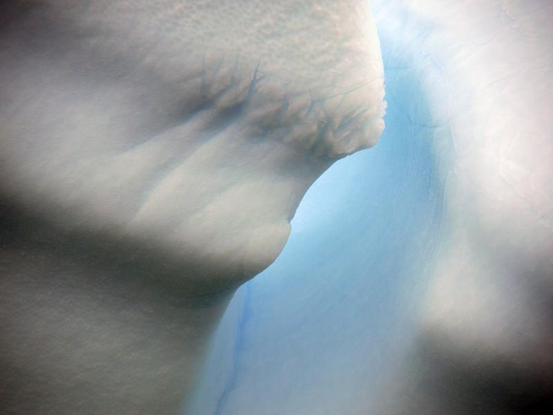 1376 - Detaille Island - 2011-02-21 - P1070145