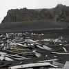 1603 - Deception Island - 2011-02-23 - P1070297