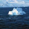 1513 - Gerlache Strait - 2011-02-22 - P1010880