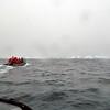 1426 - Penola Strait-Booth Island - 2011-02-22 - P1010751