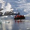 0390 - Neko Harbour - 2011-02-20 - P1050910